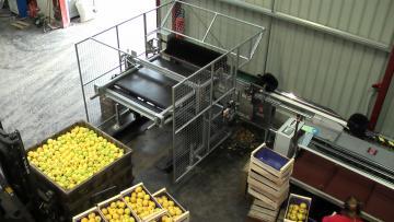 Vide palox à sec alimentant une Calibfruit