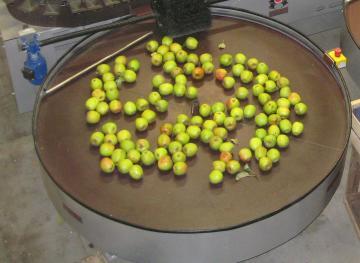 Rotary pour pomme / poire